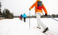 Arctic Day: Cross Country Ski Tour | half or full day, Day Tour, Adventure, Winter, Skiing