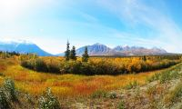 Yukon Summer Dream | Active Summer Adventure, Multi-Day Tour, Adventure, Summer/Fall, Hiking, Canoeing, Hot Springs, Flying, Wildlife Viewing, Sightseeing