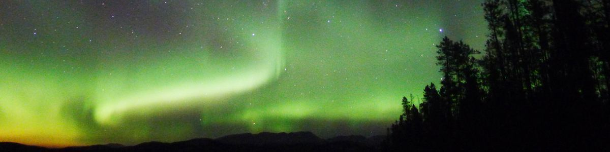 Yukon's Best Value Aurora Viewing Tour, Multi-Day Tour, Northernlights, Sightseeing, Dog Sledding, Summer/Fall, Winter, Hot Springs, Wildlife Viewing