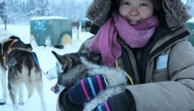 """Meeting Sleddogs"" (Miki Maebara)"
