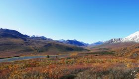 Arctic Tundra & Dawson City | Fall colors at their best, Multi-Day Tour, Northernlights, Sightseeing, Summer/Fall, Hiking, Wildlife Viewing, Sightseeing