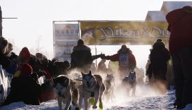 Yukon Quest Dog sledding | Follow the toughest race, Multi-Day Tour, Adventure, Dog Sledding, Winter, Wildlife Viewing, Sightseeing, Camping