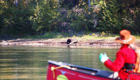 Yukon River 3D | Carmacks to Minto, Multi-Day Tour, Adventure, Summer/Fall, Canoeing, Fishing, Wildlife Viewing, Sightseeing, Camping