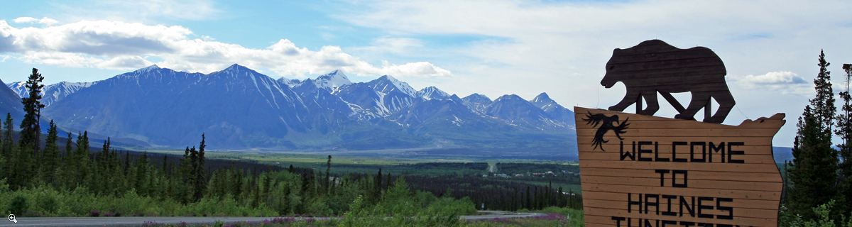 Arctic Day: Kluane National Park Tour | full day