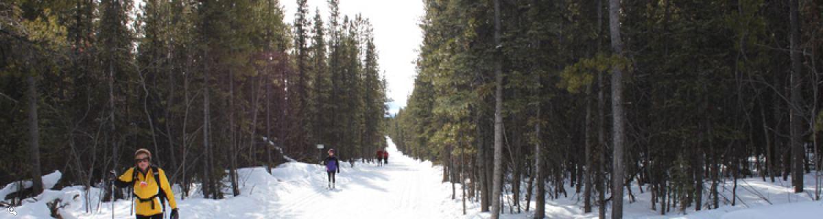 Yukon Cross Country Ski Tour | Backcountry Trails
