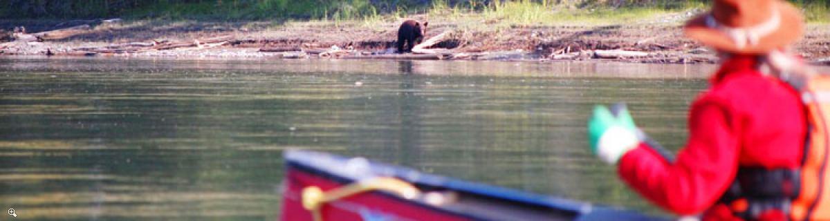 ユーコン川ツアー | レイクラバージュからカーマックスまで