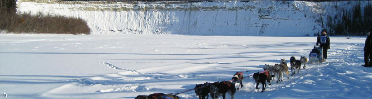 Yukon Quest Dog sledding | Follow the toughest race