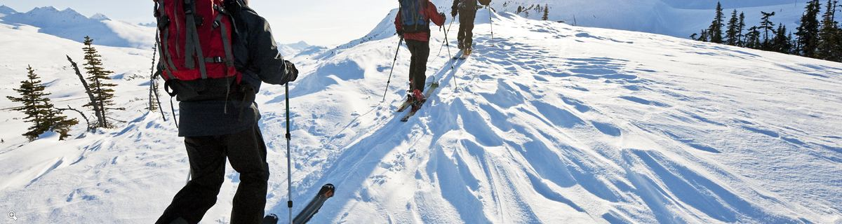 Arctic Day: Cross Country Ski Tour | half or full day
