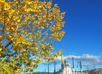 Fall Colors at the SS Klondike