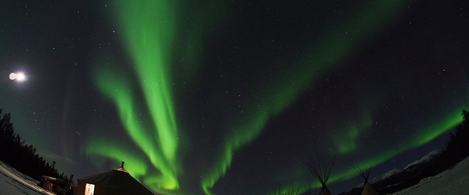 Best Value Aurora Viewing | Yukon Wildlife