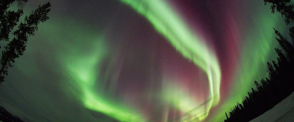 Arctic Day: Aurora Borealis Viewing | evening
