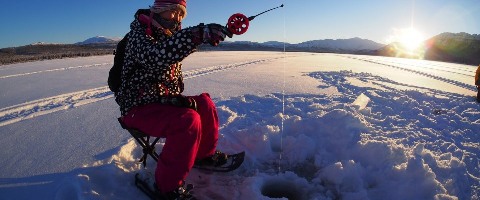 Arctic Day: Ice Fishing & Snowshoeing | full day