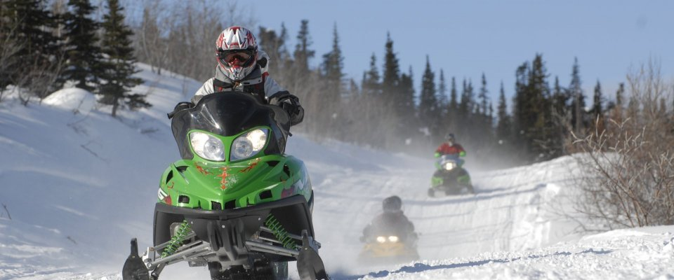 Arctic Day: Snowmobiling | half day