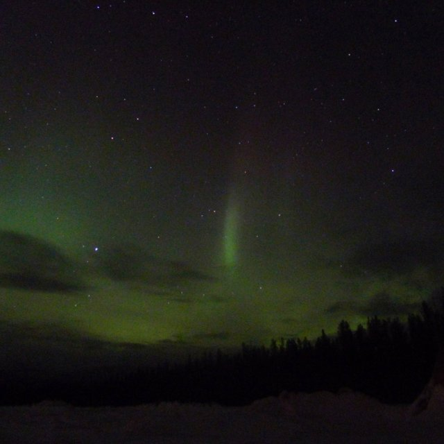 Arctic Day: Aurora Viewing | evening (Mar 12, 2012)