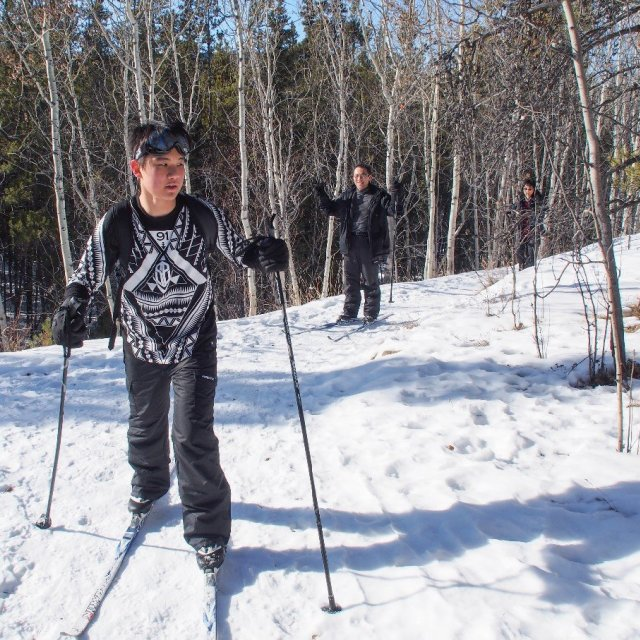 Arctic Day: Cross Country Ski Tour | half day (Mar 12, 2019)