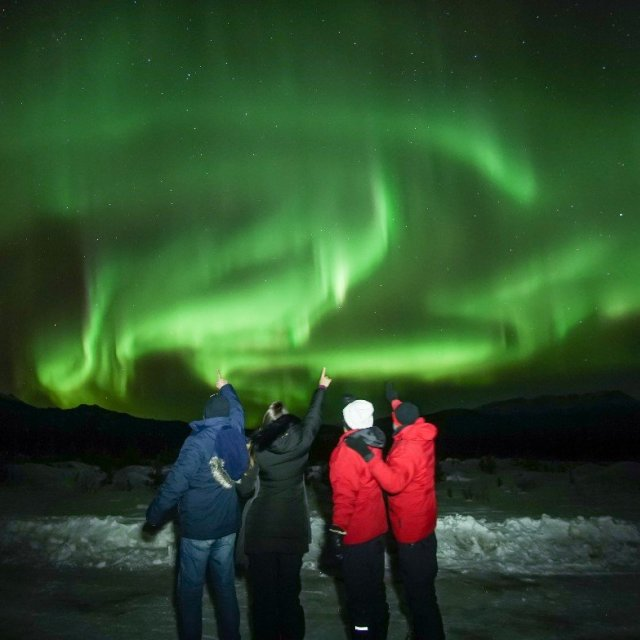 Arctic Day: Aurora Borealis Viewing | evening (Mar 3, 2019)