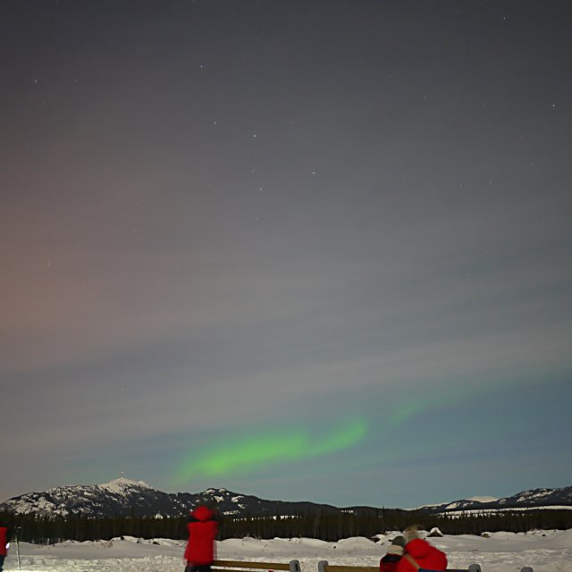 Arctic Day: Aurora Viewing | evening (Feb 25, 2013)