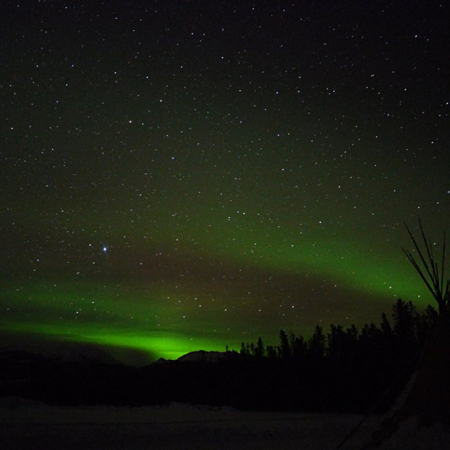 Arctic Day: Aurora Viewing | evening (Mar 02, 2013)