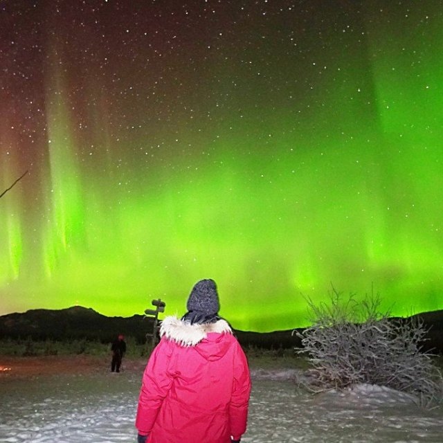 Arctic Day: Aurora Borealis Viewing | evening (Dec 29, 2018)