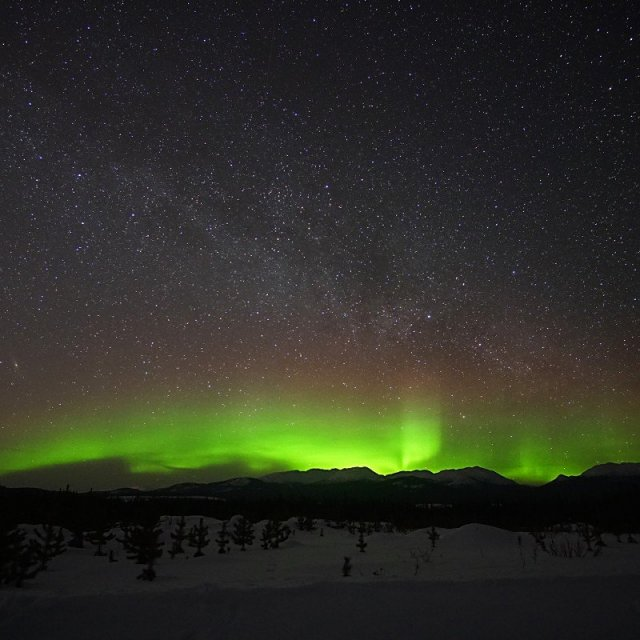 Arctic Day: Aurora Borealis Viewing | evening (Mar 14, 2020)
