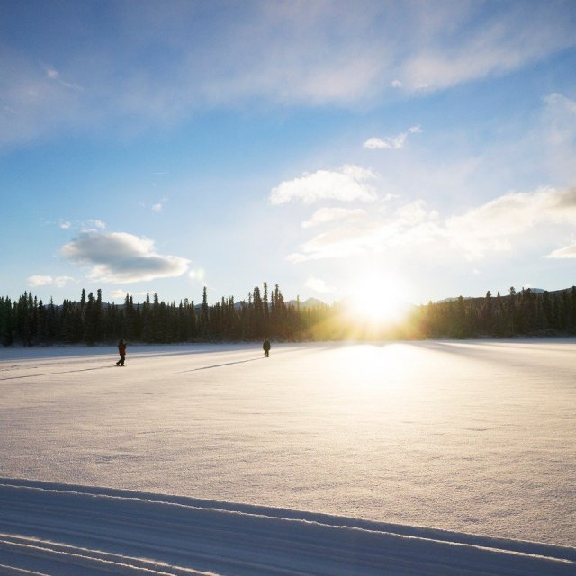 Arctic Day: Snowshoeing Tour | half day (Dec 28, 2018)