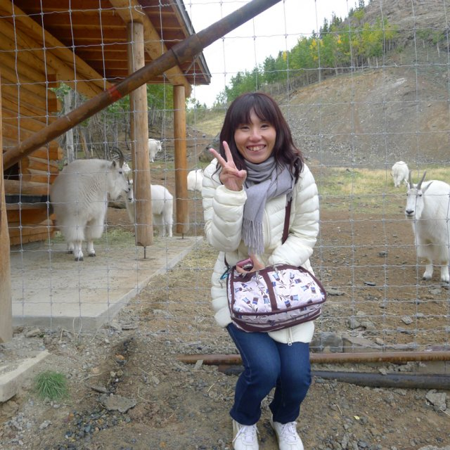 Arctic Day: Wildlife & Hot Springs | half day (Sept 07, 2012)