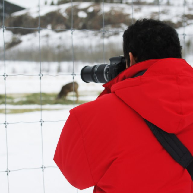 Arctic Day: Wildlife Preserve | half day (Feb 17, 2013)