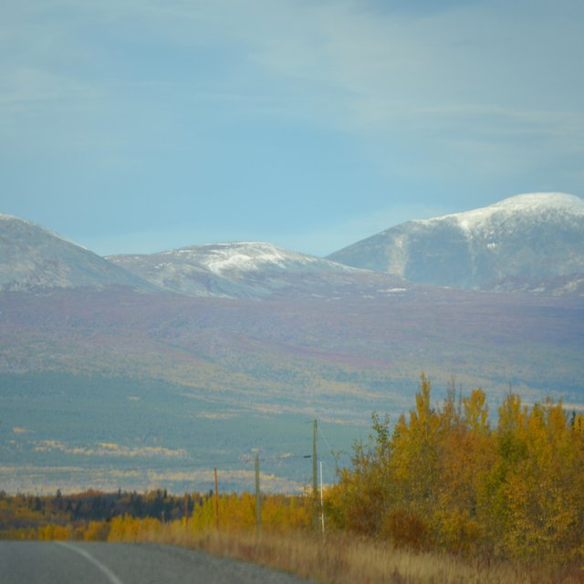 Arctic Day: Kluane National Park Tour | full day (Sept 18, 2012)