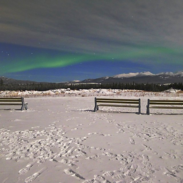 Arctic Day: Aurora Viewing | evening (Dec 01, 2012)
